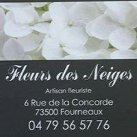 Fleuriste Modane Fourneaux