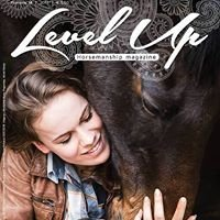 Level Up magazine