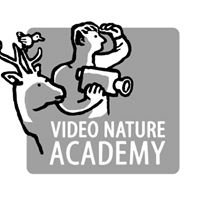 Video Nature Academy