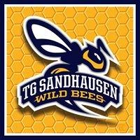 TG Sandhausen Wild Bees