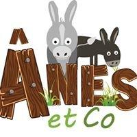 Ânes et Co