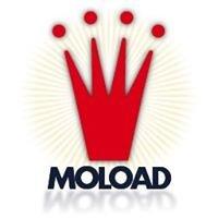 MOLOAD Social
