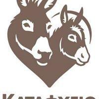 Donkey Sanctuary (Cyprus) - Greek