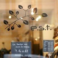 E.S.T. Eastern Summer Time