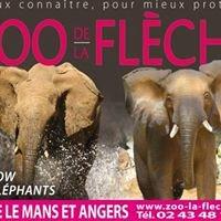 Une saison au zoo:Zoo de la flèche