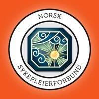Norsk Sykepleierforbund - Telemark