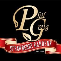Phil Greig Strawberry Gardens