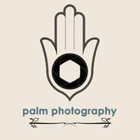 Palm Photography