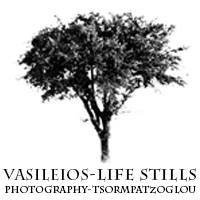 Vasileios Tsormpatzoglou Photography