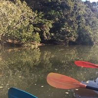 Puhoi River Canoes