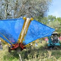 Macchine agricole raccolta Olive e Frutti pendenti di Terenzi s.r.l