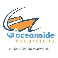 Oceanside Excursions - Gros Morne