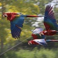 Zoo de Doue La Fontaine