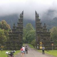Bali Driver & tour organizer