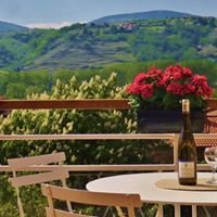 Gite - The Barn of the Vines / La Grange des Vignes