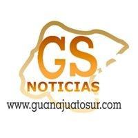 Guanajuato Sur Noticias