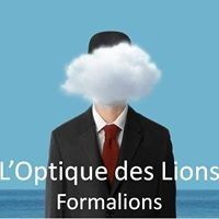 Formalions - Optique des Lions - Basse Vision