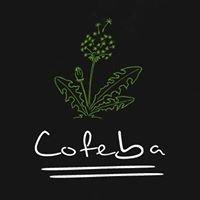 Cofeba