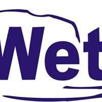 Wetlandi