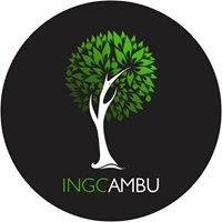 Ingcambu