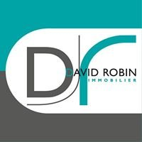 DAVID ROBIN Immobilier