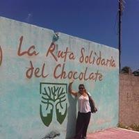 CACAO CHOCOLHAA