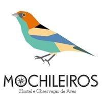 Mochileiros Hostel e Observação de Aves