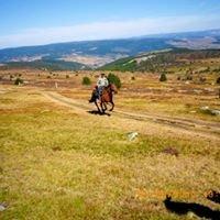 Randonnée à cheval Domaine de Viaye
