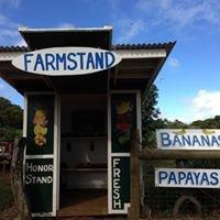 Derby Farm Stand