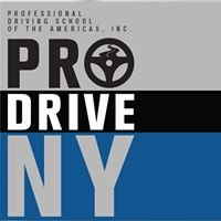 Professional Driving School of the Americas, Inc.