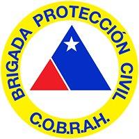 Brigada protección civil cobrah