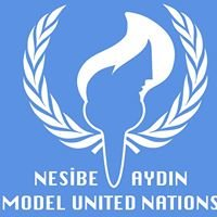 Nesibe Aydin Model United Nations 2013