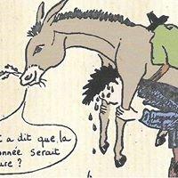 Histoires d'ânes  43
