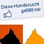Altdeutsche Schäferhunde vom Möhnesee & vom schwarzen Traum