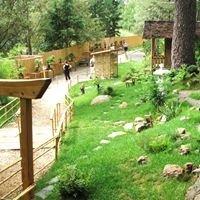 Jardin arboretum  bonsaï