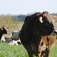 Milligan Dairy Farm