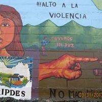 Cripdes El Salvador2