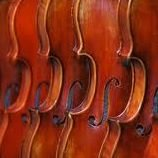 PSJA ECHS Bear Orchestra
