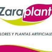 Zaraplant, Flores y Plantas artificiales.