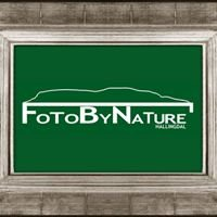 Fotobynature