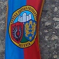 Udruga Zrinskih-Frankopana Drivenik