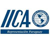 IICA Paraguay