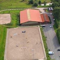 Schöniger Pferde - Ellefeld (Vogtland)