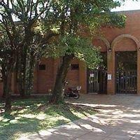Biblioteca Facultad De Arte Y Diseño-Obera