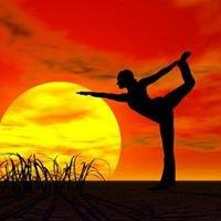 Colorado School of Iyengar Yoga