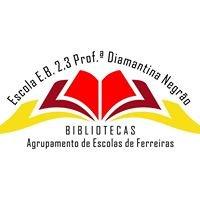 Biblioteca Diamantina