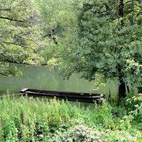 Réserve naturelle nationale de la forêt d'Erstein