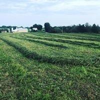 Hollerin Oaks Farms