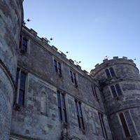 Camp Bestival Lulworth Castle