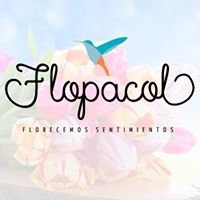Flopacol.